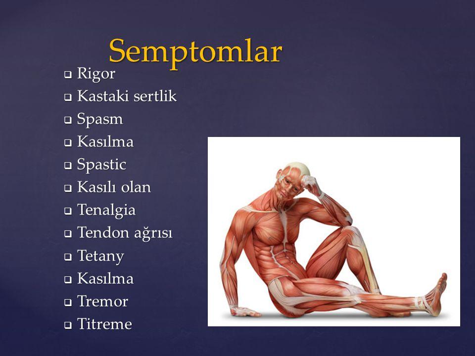  Rigor  Kastaki sertlik  Spasm  Kasılma  Spastic  Kasılı olan  Tenalgia  Tendon ağrısı  Tetany  Kasılma  Tremor  Titreme Semptomlar