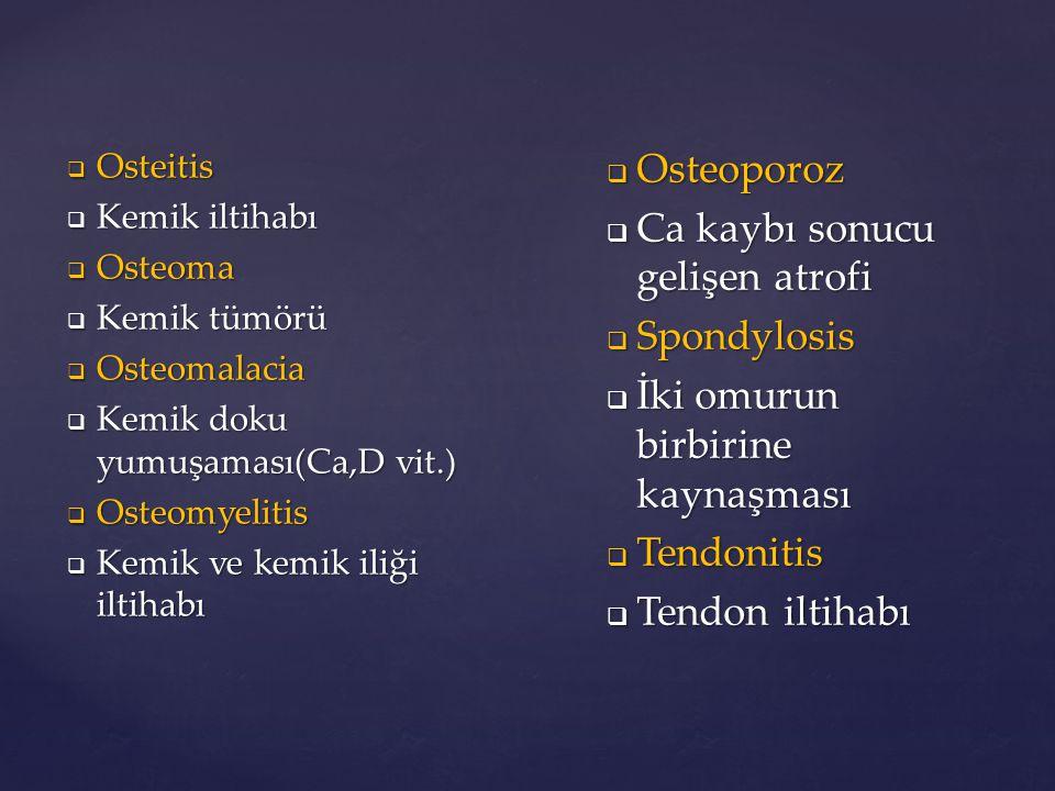  Osteitis  Kemik iltihabı  Osteoma  Kemik tümörü  Osteomalacia  Kemik doku yumuşaması(Ca,D vit.)  Osteomyelitis  Kemik ve kemik iliği iltihabı