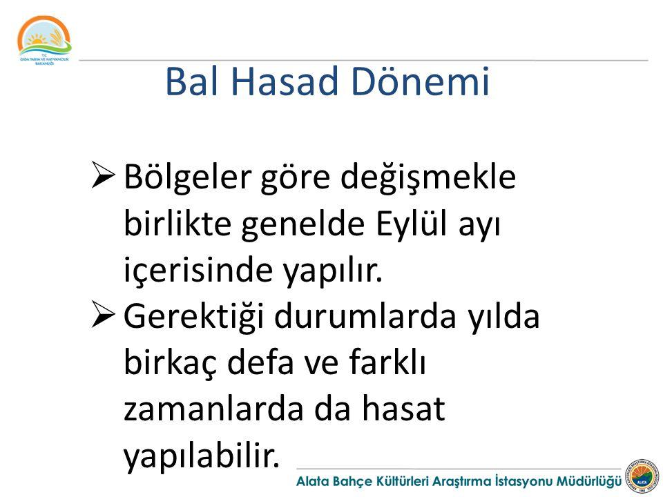 Bal Hasad Dönemi  Bölgeler göre değişmekle birlikte genelde Eylül ayı içerisinde yapılır.
