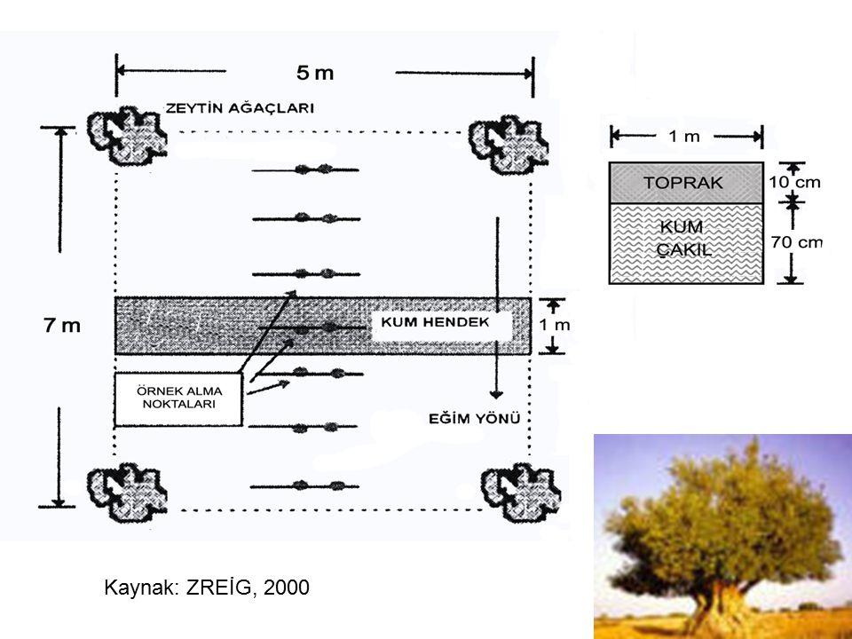 Kaynak: ZREİG, 2000