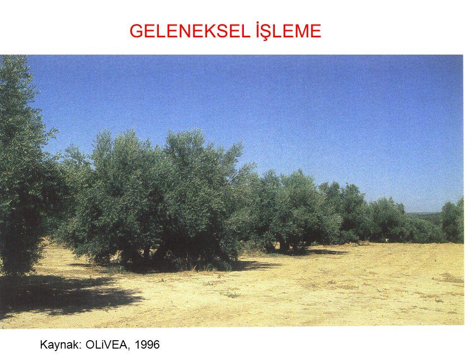 GELENEKSEL İŞLEME Kaynak: OLiVEA, 1996