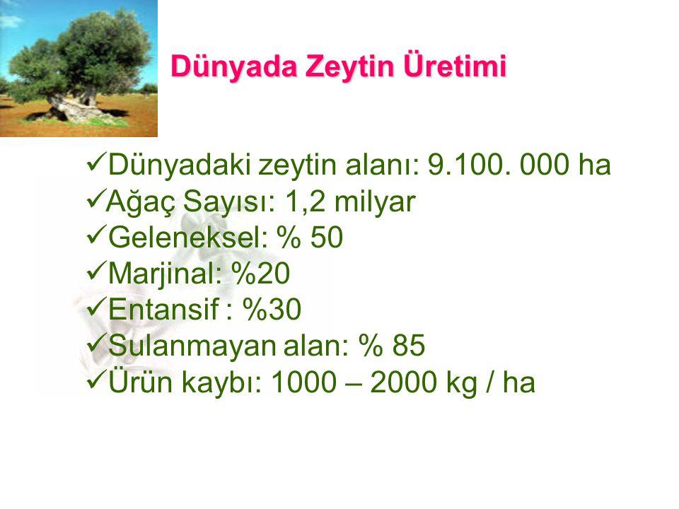 Dünyadaki zeytin alanı: 9.100.