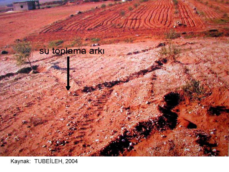 Kaynak: TUBEİLEH, 2004