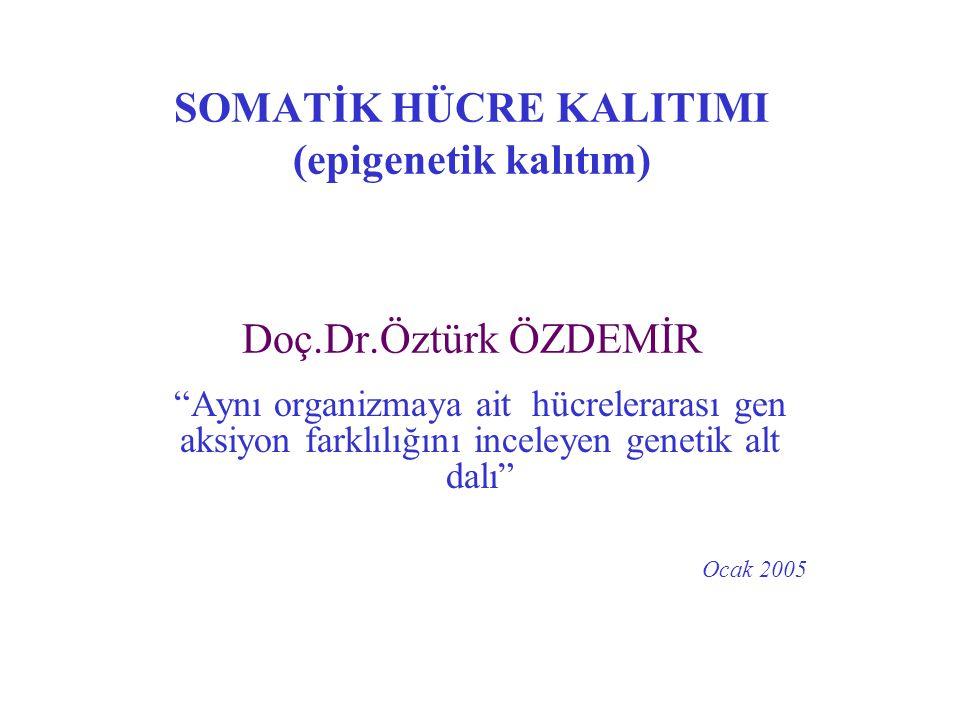 TEŞEKKÜR Öğrenci Komite Not 1-Ayşe Gül VURAL III 87 1-Mustafa ORAL III 87 2-Bilgin DEMİR III 86 3-Naciye AYGÜN III 85