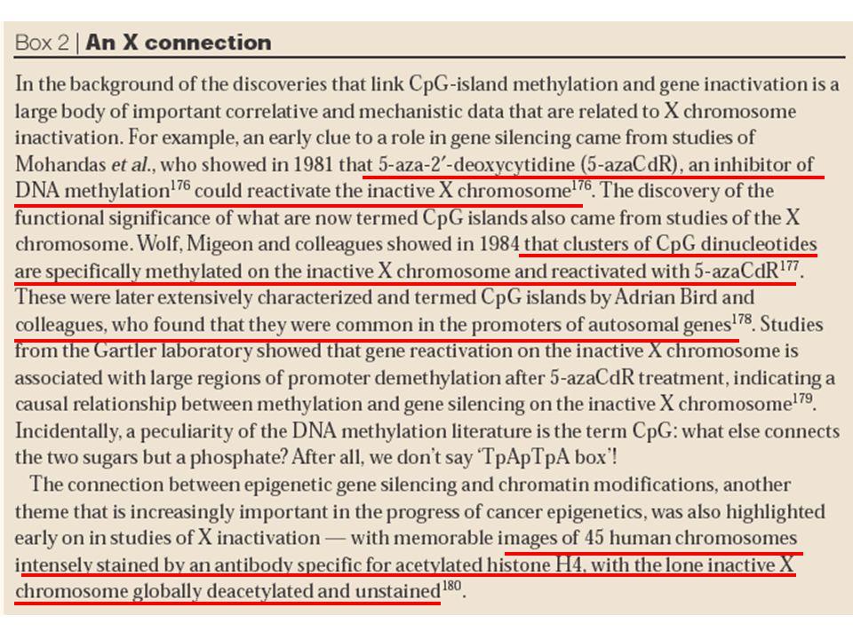 Ac -acetylated histones; mC-methylated Cytosine HDAC -histone deacetylases: Pol II- RNA polymerase II GTF- general transcription factors HAT -histone acetyltransferases; MBD -methylated DNA binding domain