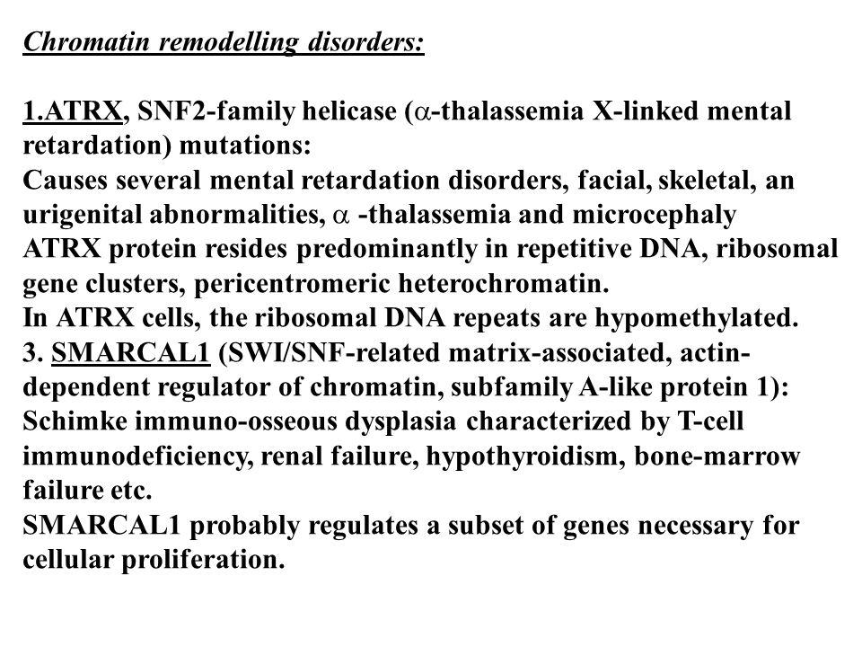 Chromatin remodelling disorders: 1.ATRX, SNF2-family helicase (  -thalassemia X-linked mental retardation) mutations: Causes several mental retardati