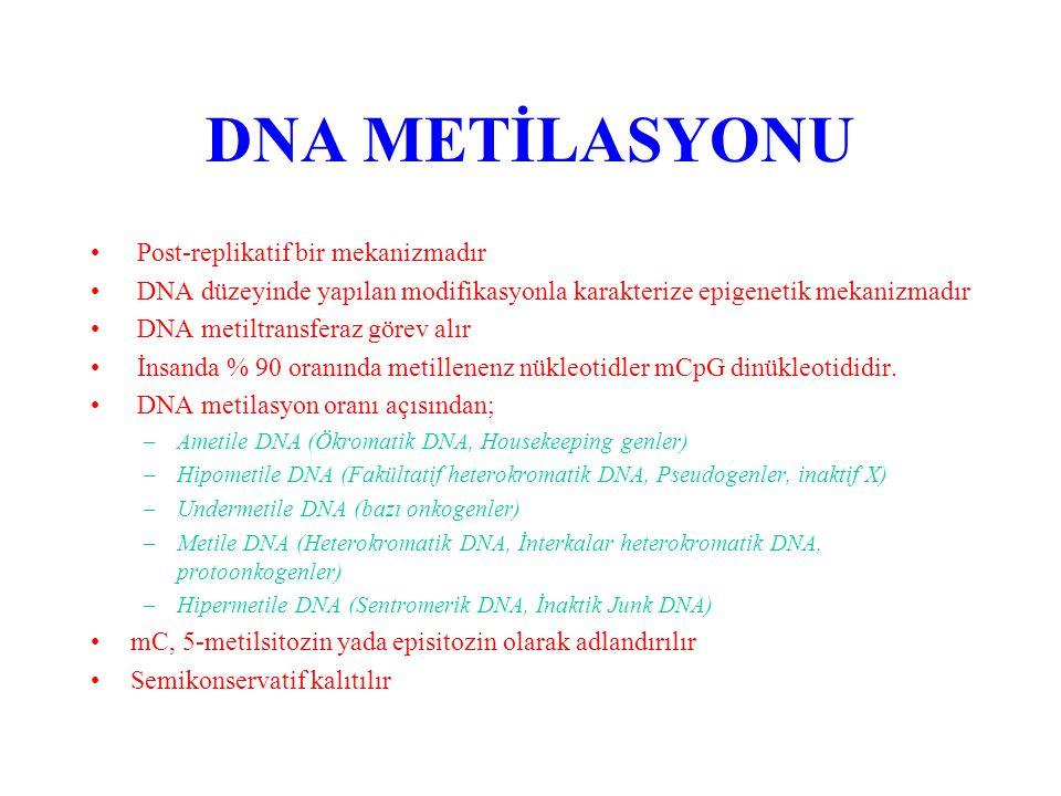 ELEMANLARI - Metil vericisi SAM (S adenozil methionin) - Substrat template DNA - Enzim DNA Metil transferaz - SAM metil grubunu kaybedince SAH (S adenozin homosistein)'e dönüşür.