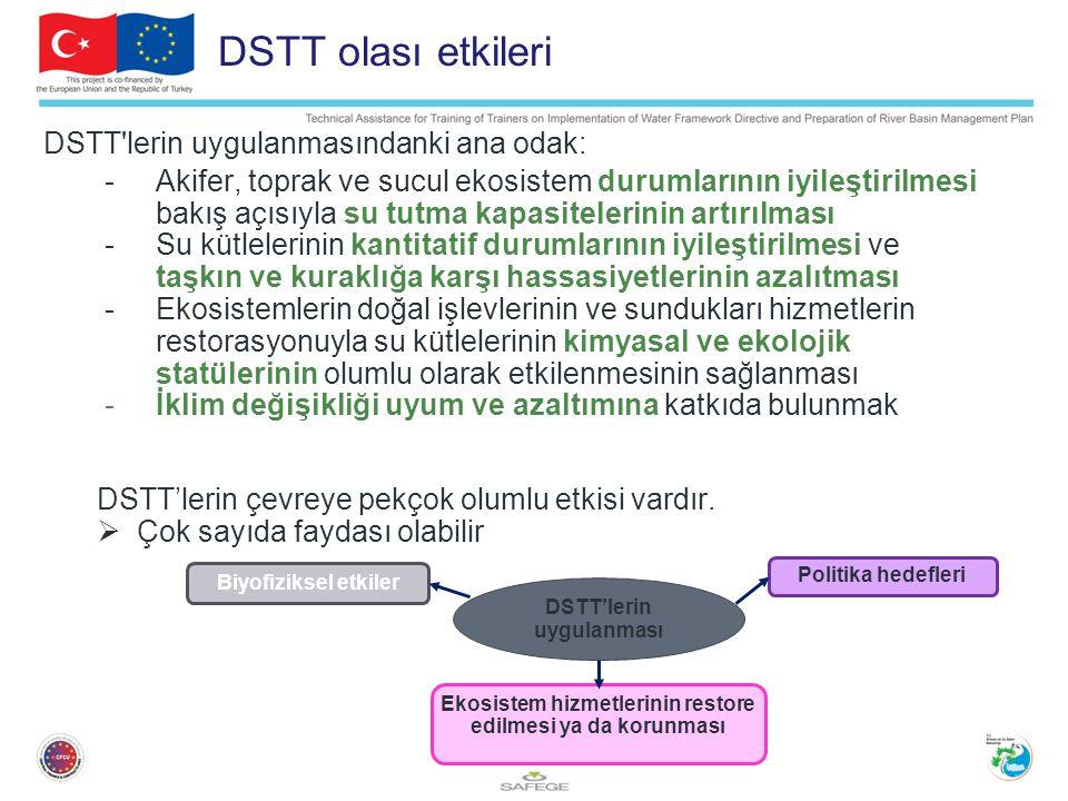 3 DSTT olası etkileri DSTT lerin uygulanmasındanki ana odak: -Akifer, toprak ve sucul ekosistem durumlarının iyileştirilmesi bakış açısıyla su tutma kapasitelerinin artırılması -Su kütlelerinin kantitatif durumlarının iyileştirilmesi ve taşkın ve kuraklığa karşı hassasiyetlerinin azalıtması -Ekosistemlerin doğal işlevlerinin ve sundukları hizmetlerin restorasyonuyla su kütlelerinin kimyasal ve ekolojik statülerinin olumlu olarak etkilenmesinin sağlanması -İklim değişikliği uyum ve azaltımına katkıda bulunmak DSTT'lerin çevreye pekçok olumlu etkisi vardır.