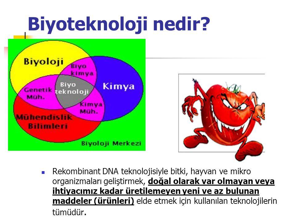 Biyoteknoloji nedir? Rekombinant DNA teknolojisiyle bitki, hayvan ve mikro organizmaları geliştirmek, doğal olarak var olmayan veya ihtiyacımız kadar
