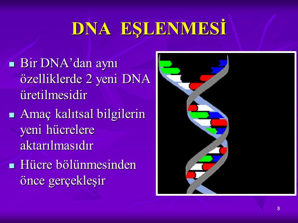 DNA EŞLENMESİ 8 Bir DNA'dan aynı özelliklerde 2 yeni DNA üretilmesidir Bir DNA'dan aynı özelliklerde 2 yeni DNA üretilmesidir Amaç kalıtsal bilgilerin
