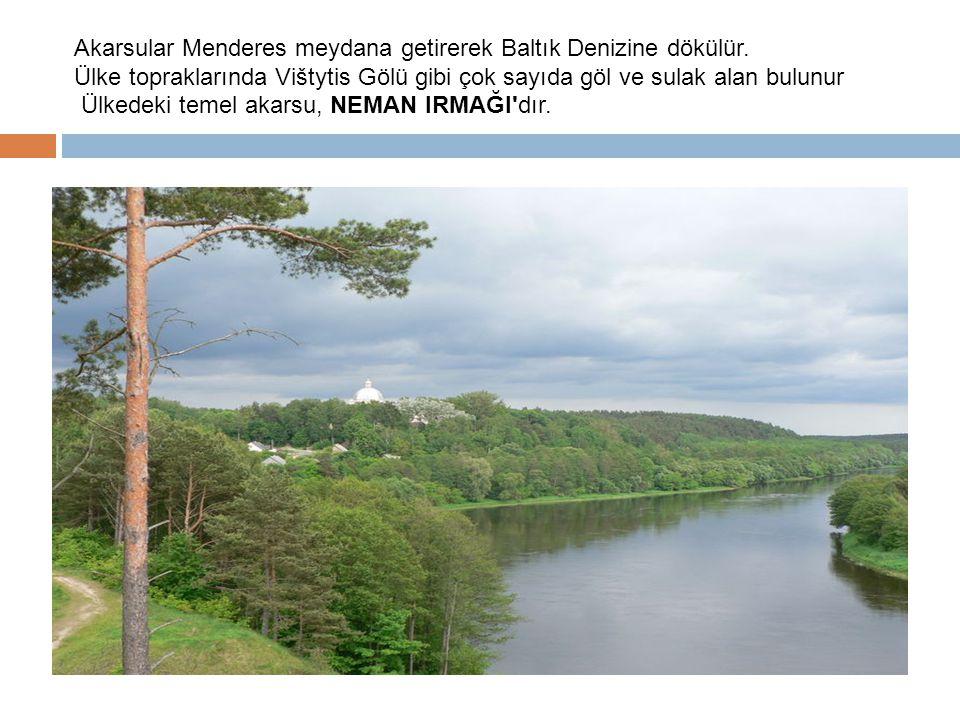 Akarsular Menderes meydana getirerek Baltık Denizine dökülür.