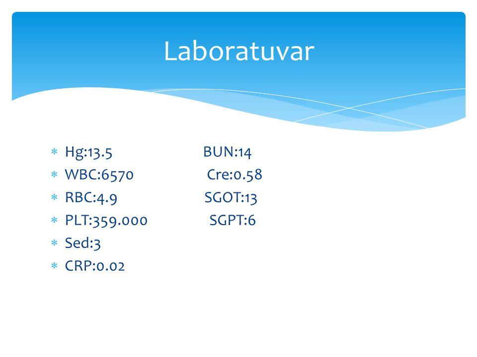  Hg:13.5 BUN:14  WBC:6570 Cre:0.58  RBC:4.9 SGOT:13  PLT:359.000 SGPT:6  Sed:3  CRP:0.02 Laboratuvar