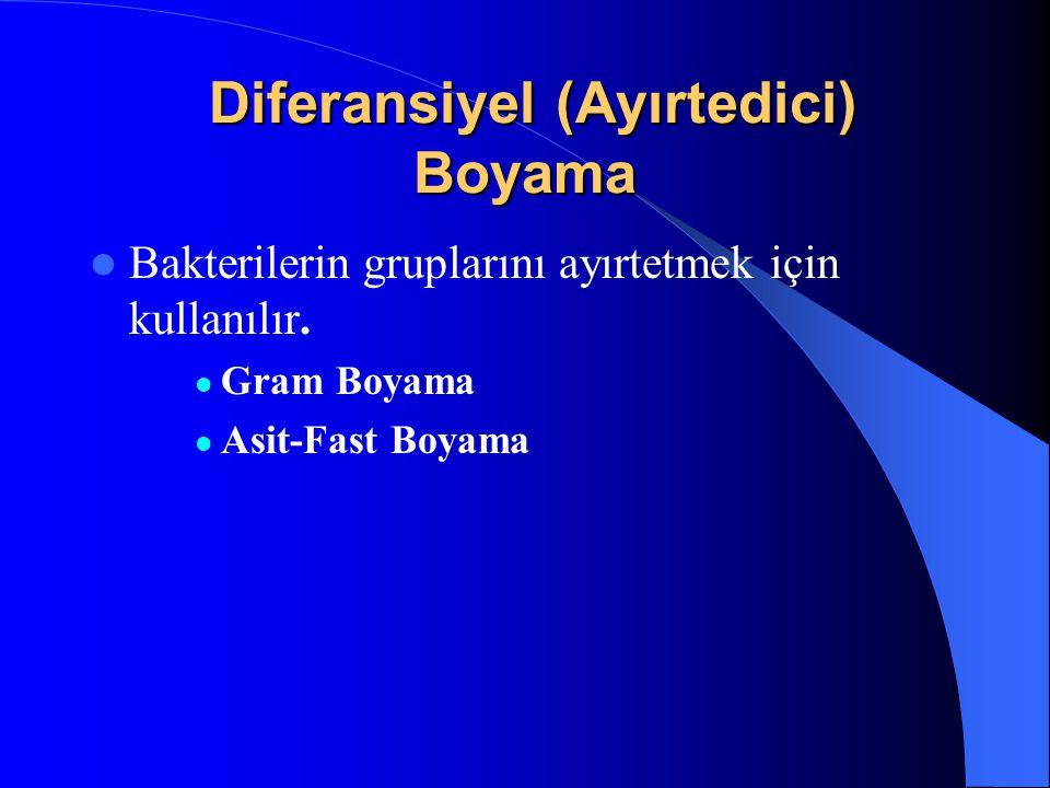 Diferansiyel (Ayırtedici) Boyama Diferansiyel (Ayırtedici) Boyama Bakterilerin gruplarını ayırtetmek için kullanılır.