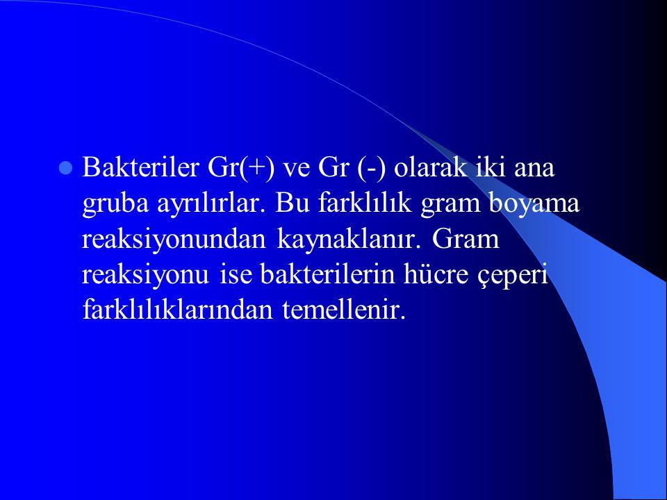 Bakteriler Gr(+) ve Gr (-) olarak iki ana gruba ayrılırlar.