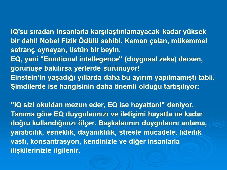 IQ ise malum, öğrenme ve anlama yeteneğini, mantık yürütme, bilgiyi kullanma, soyut düşünce ve analitik yetenekleri ölçer.