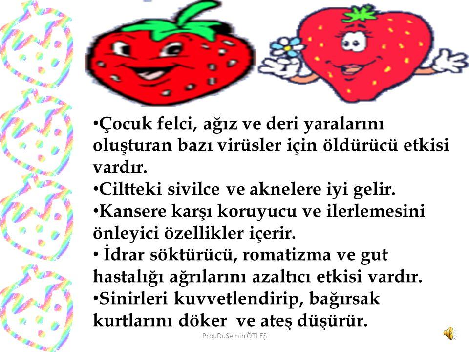 Çilek besin değeri yüksek bir meyvedir.