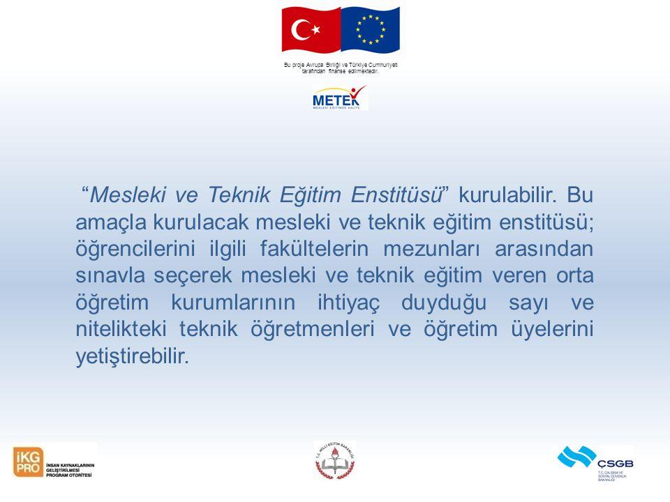 """Bu proje Avrupa Birliği ve Türkiye Cumhuriyeti tarafından finanse edilmektedir. """"Mesleki ve Teknik Eğitim Enstitüsü"""" kurulabilir. Bu amaçla kurulacak"""