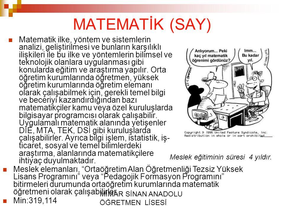 MİMAR SİNAN ANADOLU ÖĞRETMEN LİSESİ MATEMATİK (SAY) Matematik ilke, yöntem ve sistemlerin analizi, geliştirilmesi ve bunların karşılıklı ilişkileri il