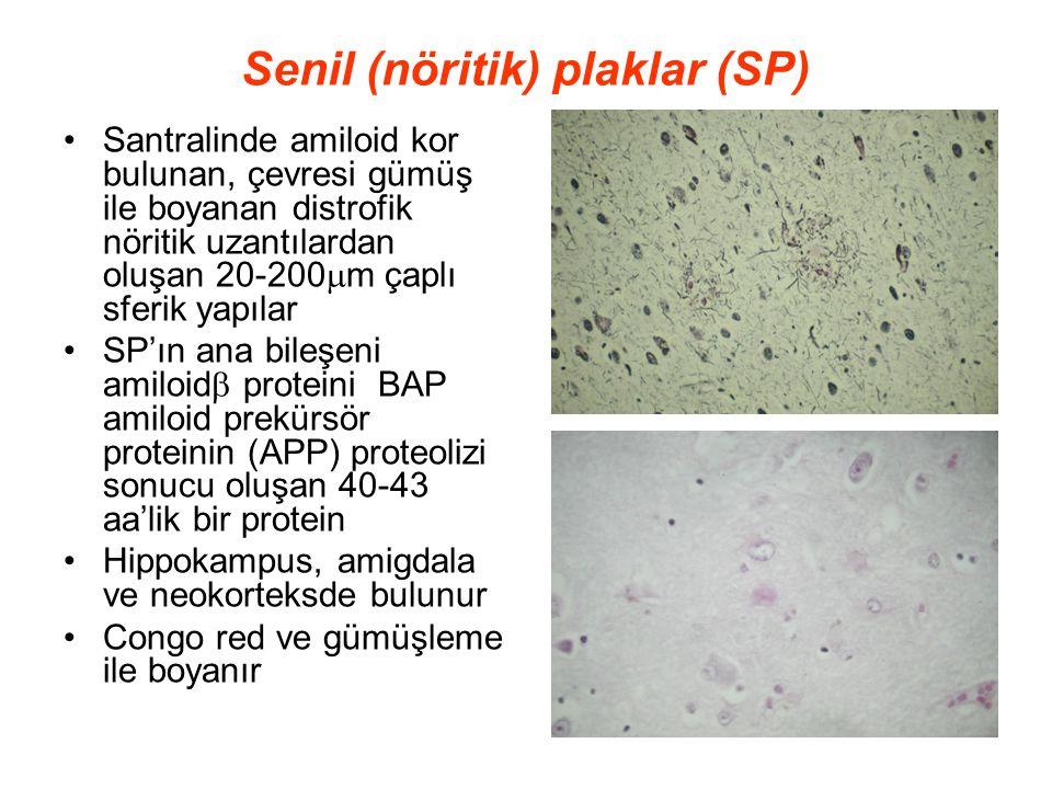 Senil (nöritik) plaklar (SP) Santralinde amiloid kor bulunan, çevresi gümüş ile boyanan distrofik nöritik uzantılardan oluşan 20-200  m çaplı sferik