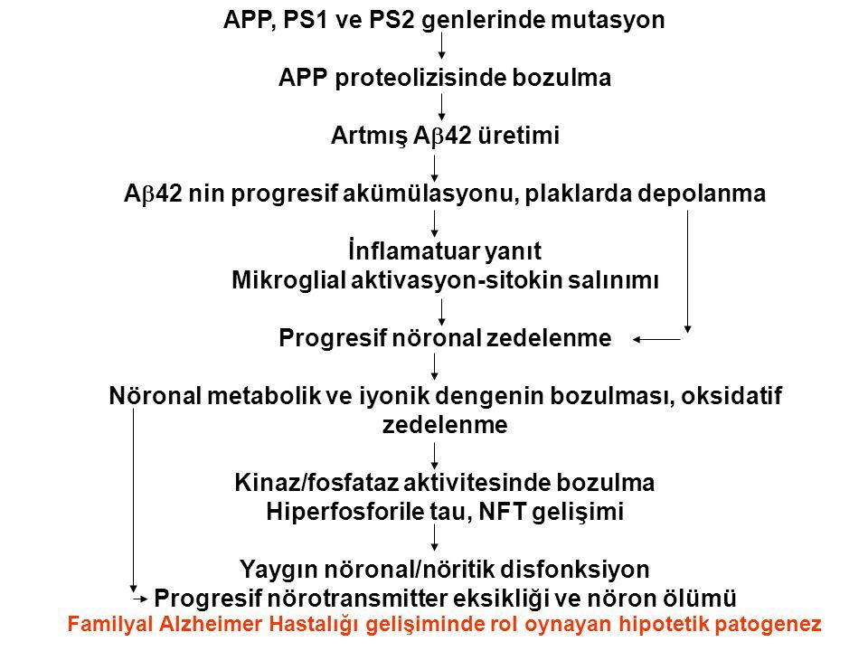 APP, PS1 ve PS2 genlerinde mutasyon APP proteolizisinde bozulma Artmış A  42 üretimi A  42 nin progresif akümülasyonu, plaklarda depolanma İnflamatu