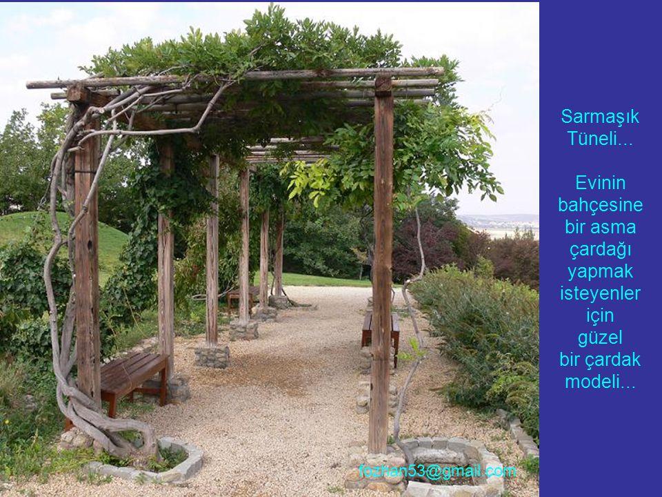 Sarmaşık Tüneli... Evinin bahçesine bir asma çardağı yapmak isteyenler için güzel bir çardak modeli... fozhan53@gmail.com