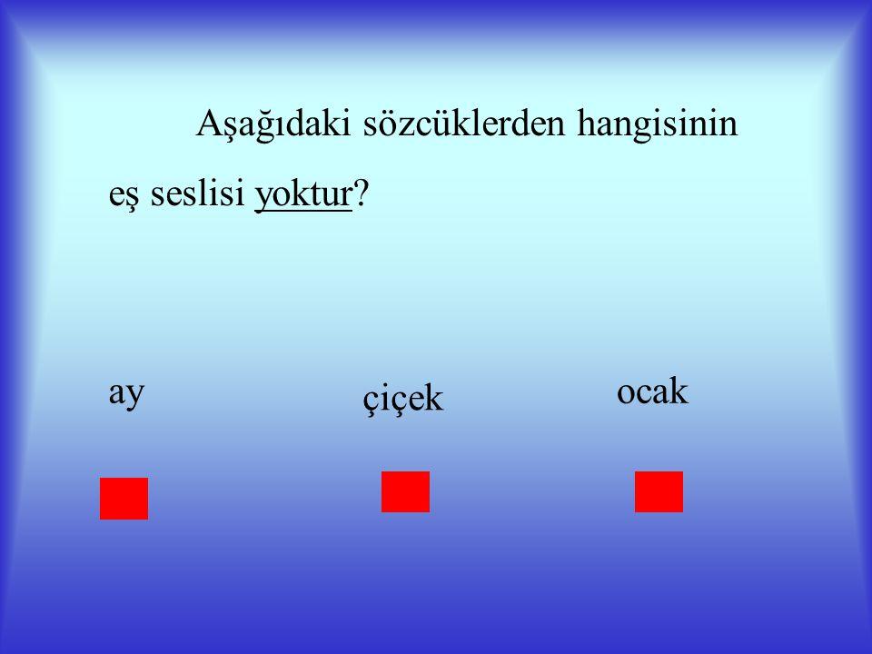 DEĞERLENDİRME Aşağıdakilerden hangisi eş sesli (sesteş) bir sözcüktür? öğretmen okul dil