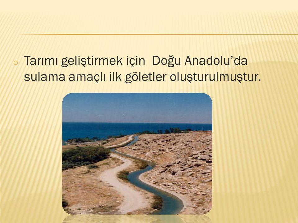 o Tarımı geliştirmek için Doğu Anadolu'da sulama amaçlı ilk göletler oluşturulmuştur.