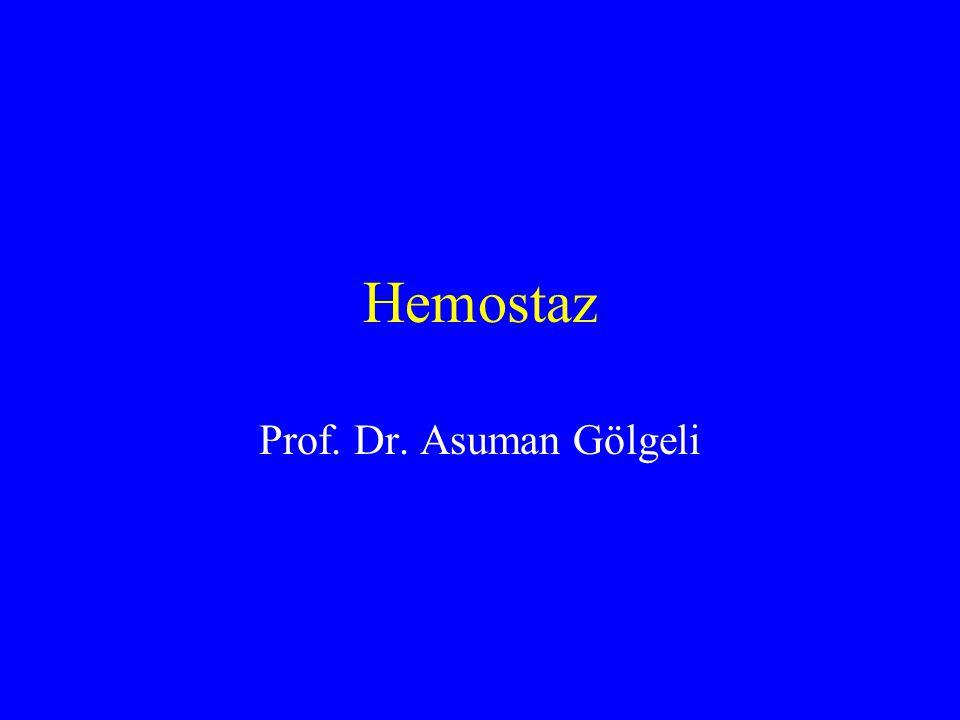 Hemostaz Prof. Dr. Asuman Gölgeli