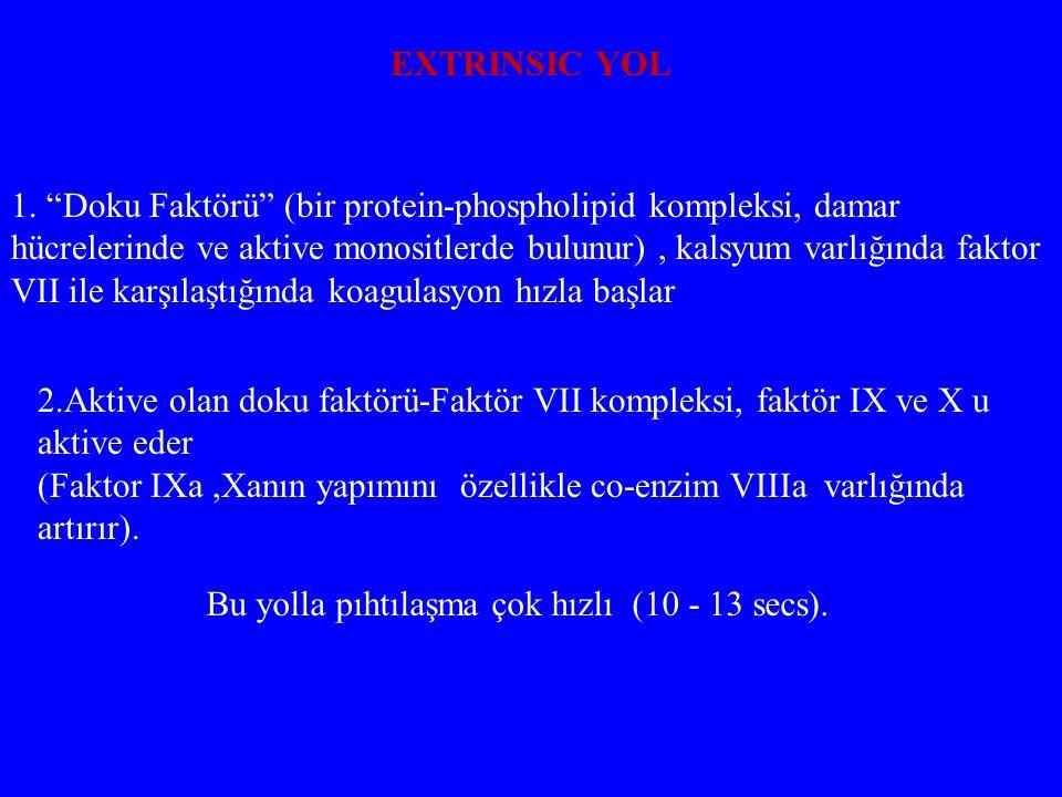 """EXTRINSIC YOL 1. """"Doku Faktörü"""" (bir protein-phospholipid kompleksi, damar hücrelerinde ve aktive monositlerde bulunur), kalsyum varlığında faktor VII"""