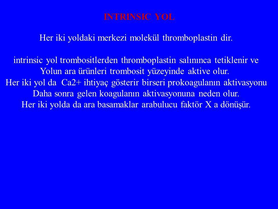 Her iki yoldaki merkezi molekül thromboplastin dir. intrinsic yol trombositlerden thromboplastin salınınca tetiklenir ve Yolun ara ürünleri trombosit