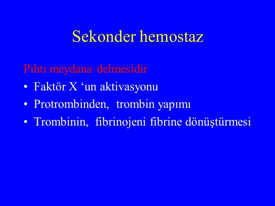 Sekonder hemostaz Pıhtı meydana delmesidir Faktör X 'un aktivasyonu Protrombinden, trombin yapımı Trombinin, fibrinojeni fibrine dönüştürmesi