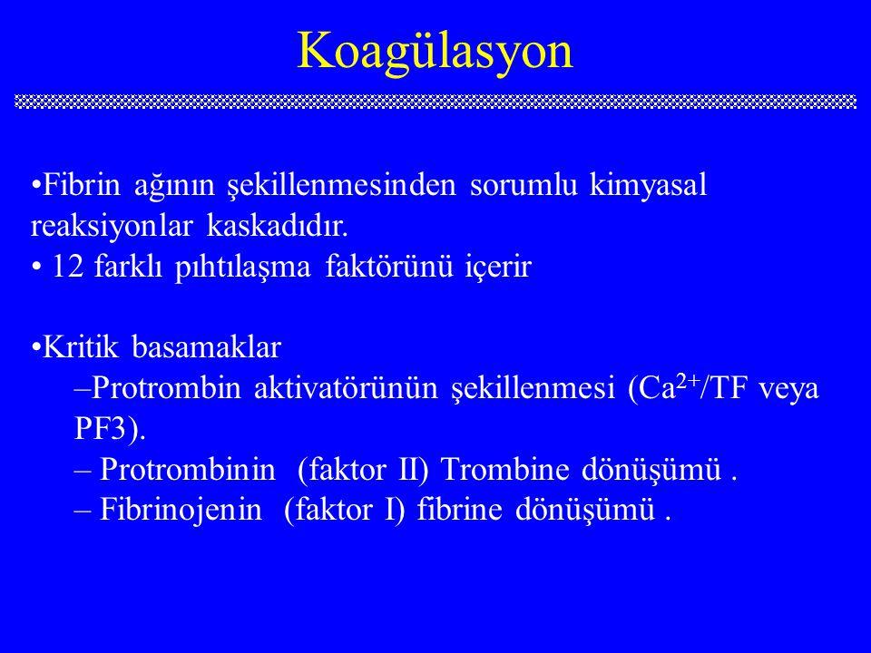 Koagülasyon yolları 1. Extrinsic yol 2. Intrinsic yol 3. Ortak yol