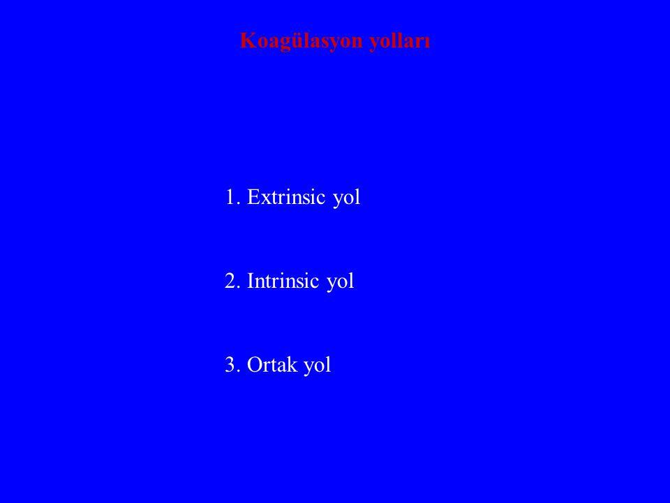 Koagülasyon faktörleri X......Stuart-prower faktör XI.....Tromboplastin antesedan XII....Hageman faktör XIII...Fibrin stabilleştirici faktör HMW-K...Yüksek mol.
