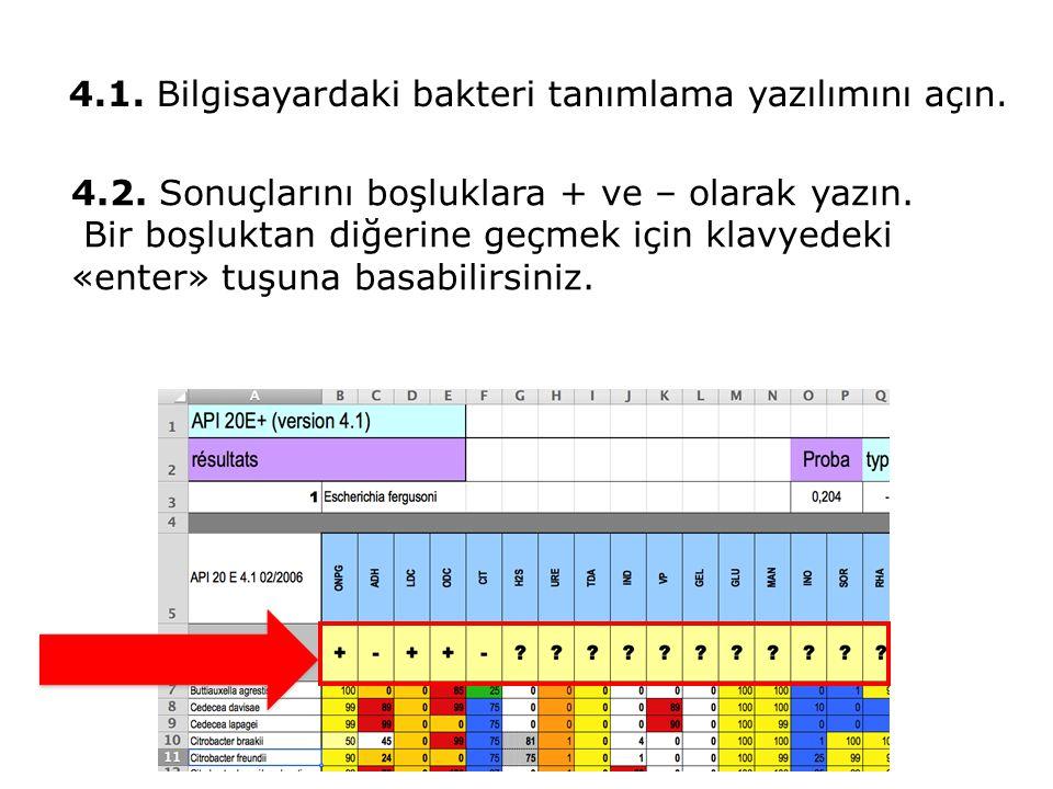 4.2. Sonuçlarını boşluklara + ve – olarak yazın. Bir boşluktan diğerine geçmek için klavyedeki «enter» tuşuna basabilirsiniz. 4.1. Bilgisayardaki bakt
