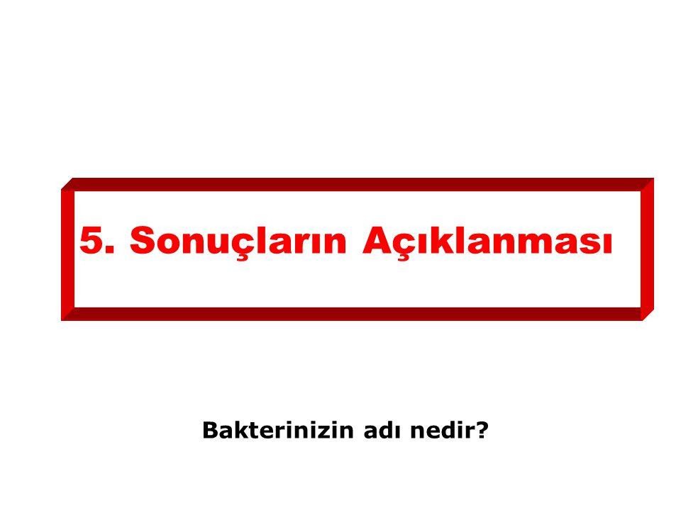 5. Sonuçların Açıklanması Bakterinizin adı nedir?