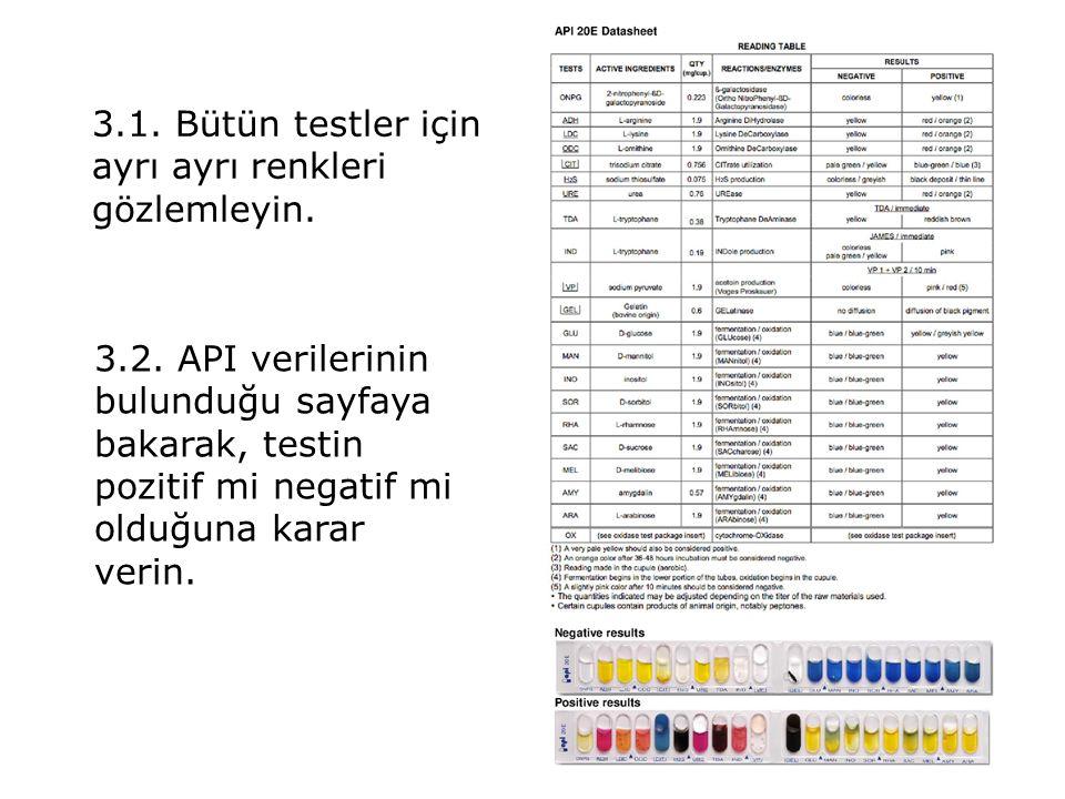 3.1.Bütün testler için ayrı ayrı renkleri gözlemleyin.