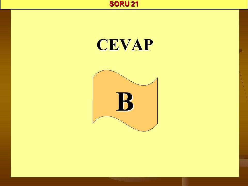 CEVAP SORU 21 B