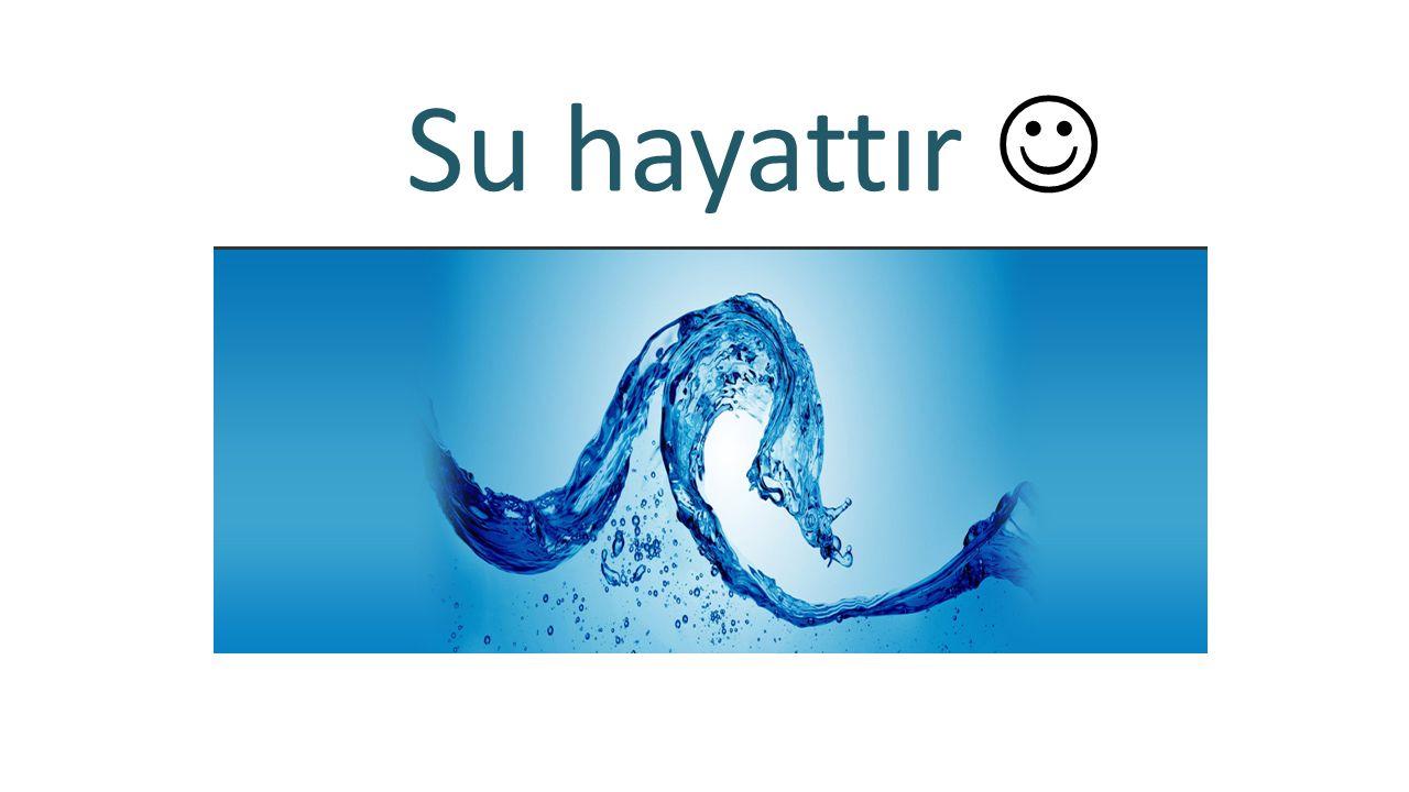 Su hayattır