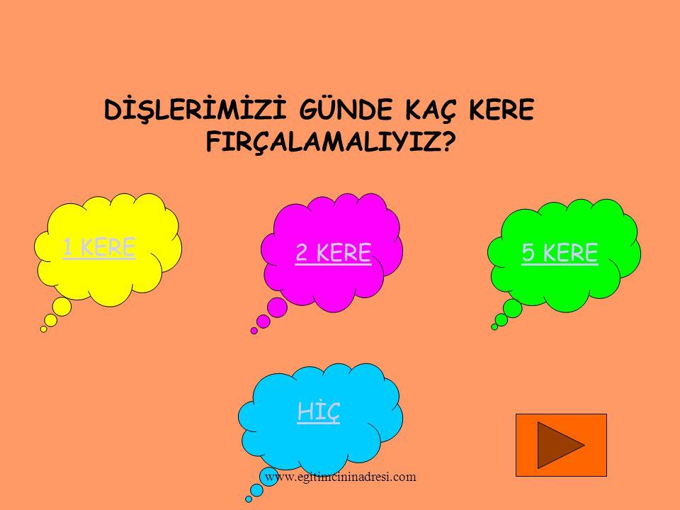 DİŞLERİMİZİ GÜNDE KAÇ KERE FIRÇALAMALIYIZ? 1 KERE 2 KERE5 KERE HİÇ www.egitimcininadresi.com