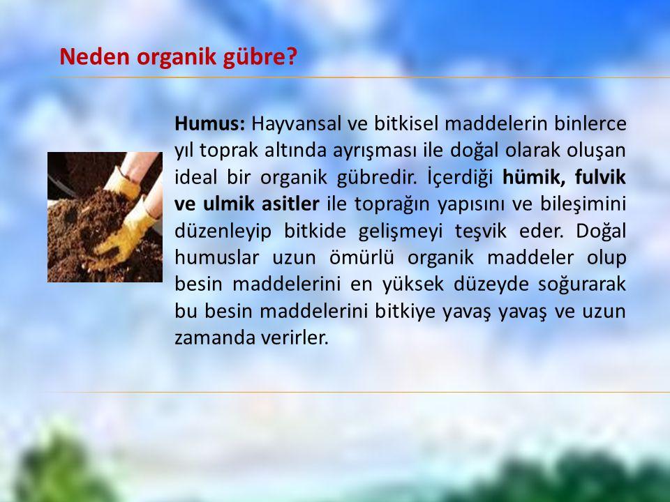 Humus: Hayvansal ve bitkisel maddelerin binlerce yıl toprak altında ayrışması ile doğal olarak oluşan ideal bir organik gübredir.