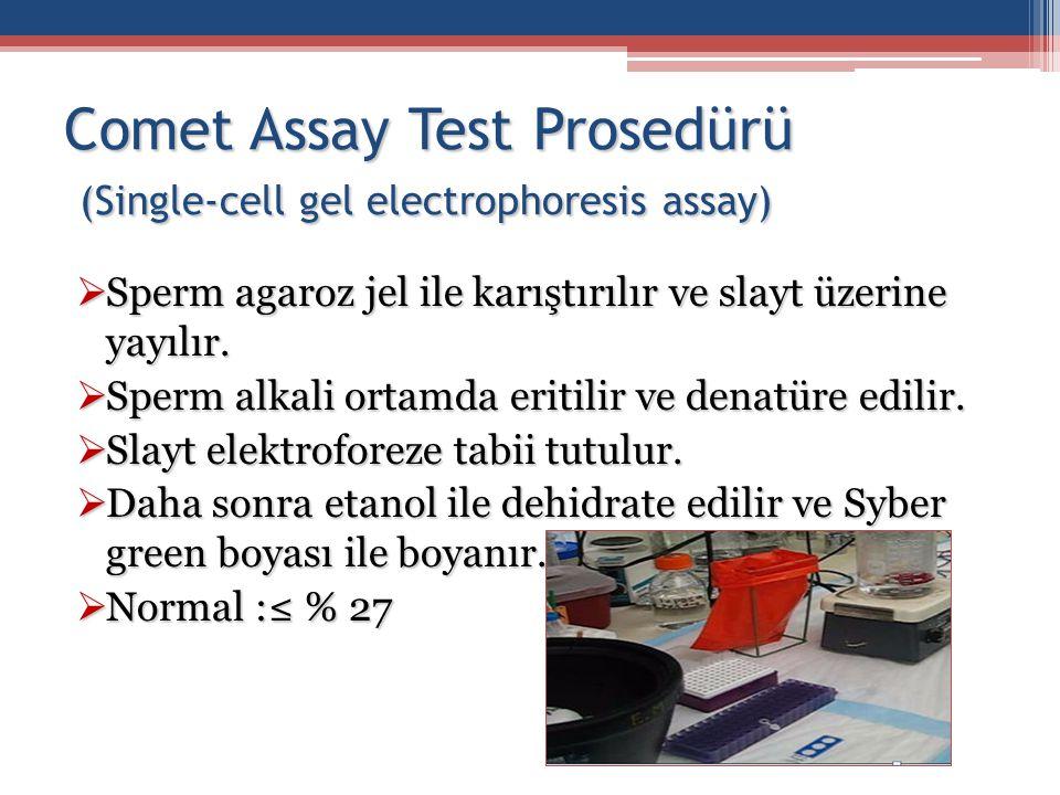 Comet Assay Test Prosedürü (Single-cell gel electrophoresis assay)  Sperm agaroz jel ile karıştırılır ve slayt üzerine yayılır.  Sperm alkali ortamd