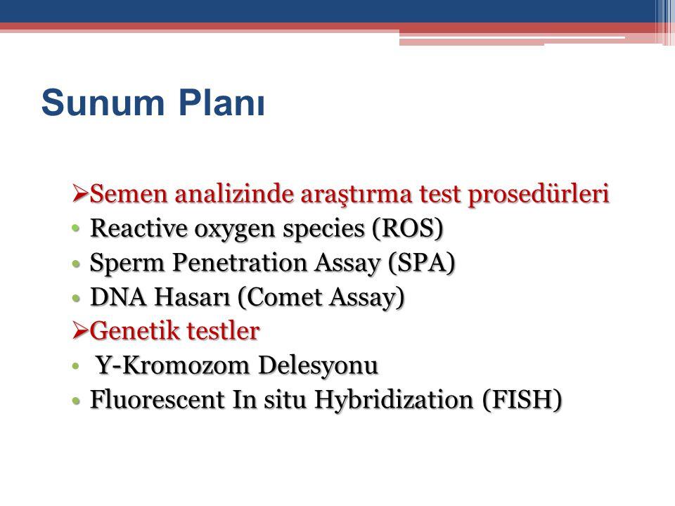Sunum Planı  Semen analizinde araştırma test prosedürleri Reactive oxygen species (ROS) Reactive oxygen species (ROS) Sperm Penetration Assay (SPA)Sp
