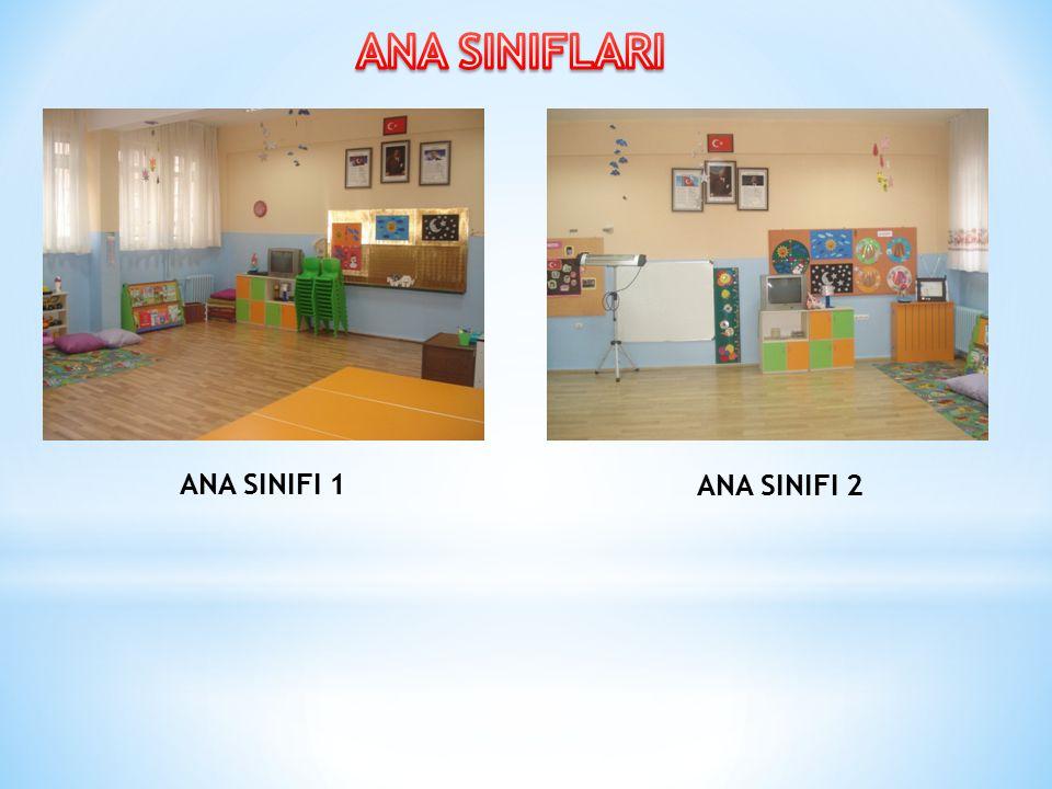 ANA SINIFI 1 ANA SINIFI 2