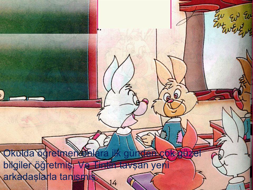 Okulda öğretmen onlara ilk günden çok güzel bilgiler öğretmiş. Ve Tintin tavşan yeni arkadaşlarla tanışmış.