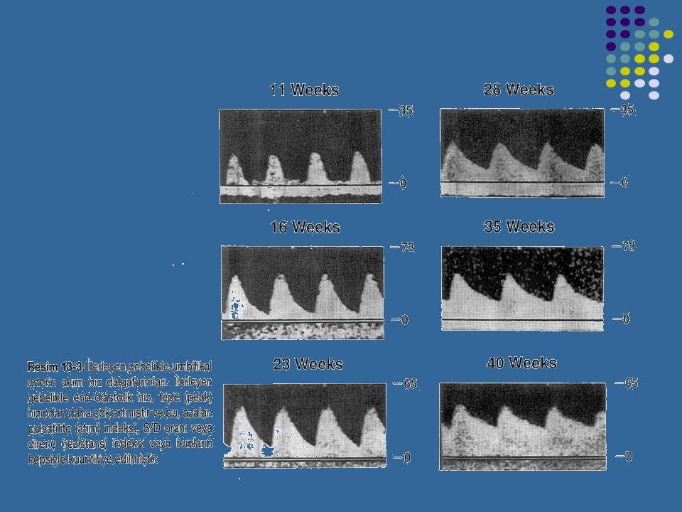 UMBLİKAL ARTER DOPPLERİ Umblikal arterler (UA) plasentaya yakın yerden değerlendirilmelidir. Normal bir gebelikte UA akım formları hem sistol hem diya