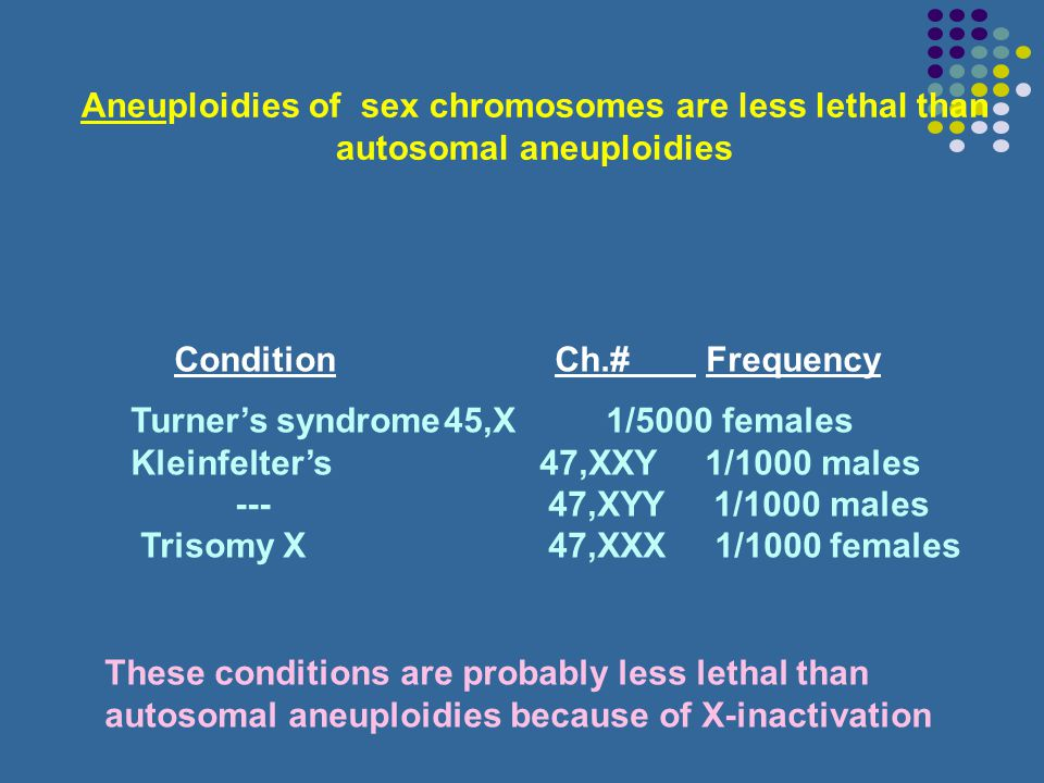 Chromosome 21 is the smallest human chromsome, containing approx. 1.5% of the total genome Trisomies of other human autosomes are extremely rare and m