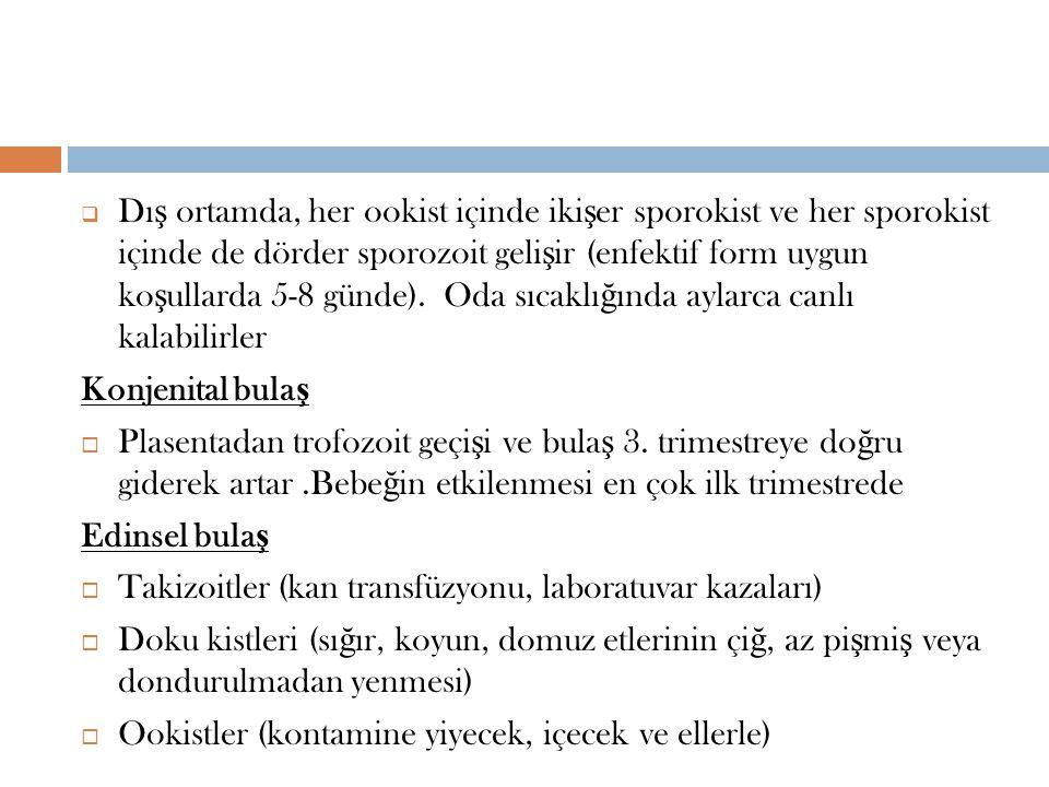  Dı ş ortamda, her ookist içinde iki ş er sporokist ve her sporokist içinde de dörder sporozoit geli ş ir (enfektif form uygun ko ş ullarda 5-8 günde).