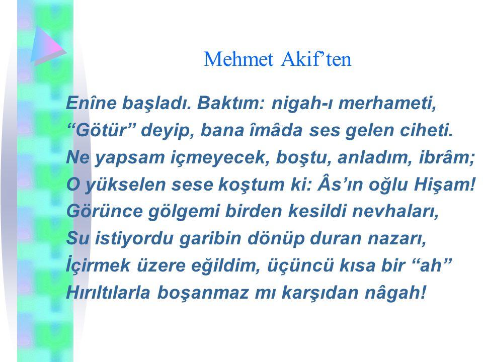 """Mehmet Akif'ten Enîne başladı. Baktım: nigah-ı merhameti, """"Götür"""" deyip, bana îmâda ses gelen ciheti. Ne yapsam içmeyecek, boştu, anladım, ibrâm; O yü"""