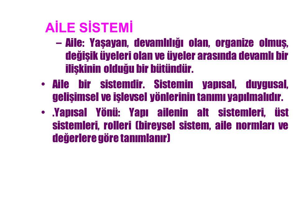 Çekirdek ailede 4 temel alt sistem vardır.