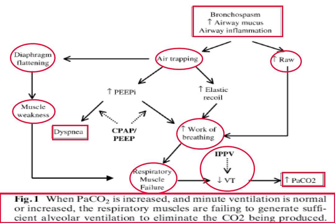 5 Tarihçe 1930 Alvan Barach, (CPAP) 1950'lere kadar Çelik Akciğer 1952 pozitif basınçlı ventilasyon (polio epidemisi) u 1960-70  CPAP, PEEP,IMV u 1980  HFPPV u 1980   Bilgisayar, mikroçip 1989 Kern ve Sanders Respironics Bi-PAP
